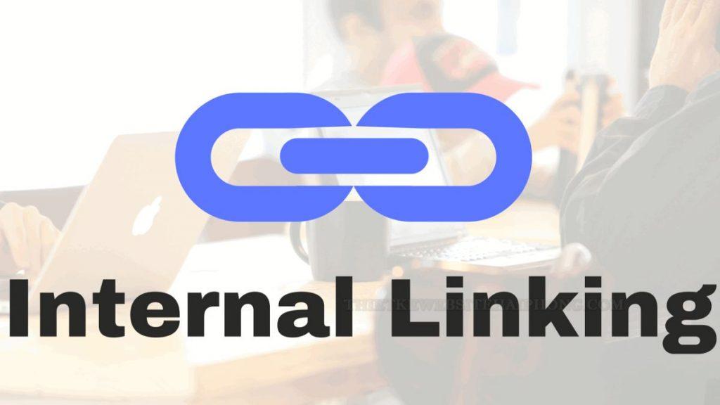 dịch vụ backlink hải phòng